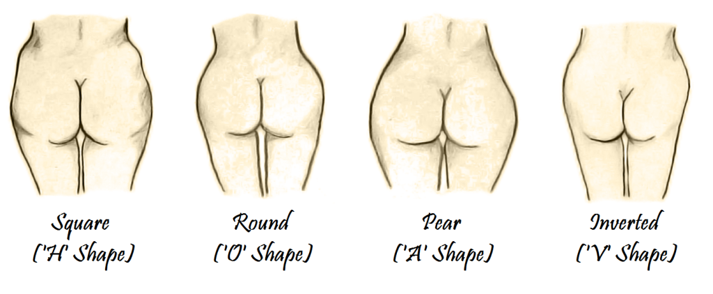 Different-Butt-Shapes-1024x422
