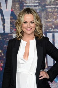 Amy Poehler attends SNL 40th Anniversary Celebration at Rockefeller Plaza in New York, on February 15, 2015 Getty (AFP) photo:  Larry Busacca